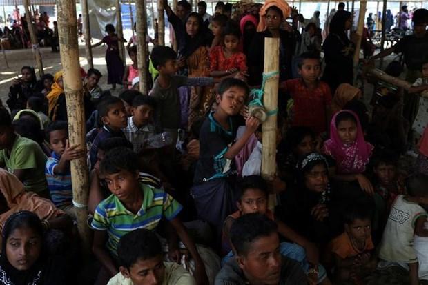 Myanmar, Bangladesh to cooperate with UNHCR on Rohingya return hinh anh 1