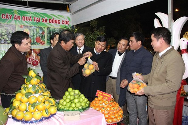 Festival promotes Bac Giang fruit industry hinh anh 1