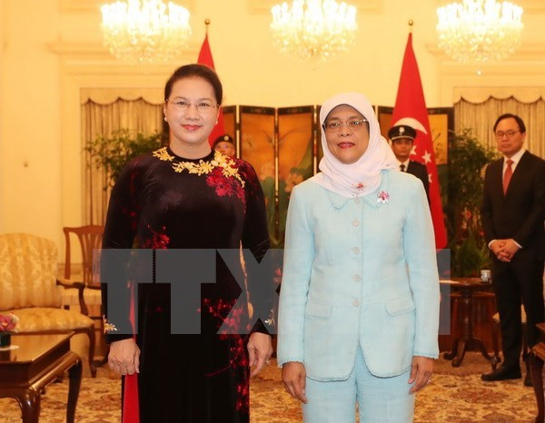 National Assembly Chairwoman meets Singaporean President hinh anh 1