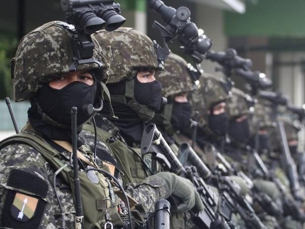 Philippines arrests Abu Sayyaf bomber hinh anh 1