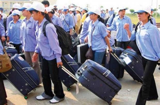Vietnam, Saudi Arabia step up labour cooperation hinh anh 1