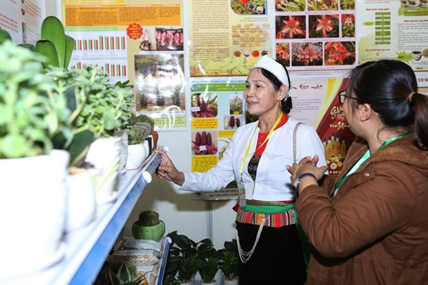 Time for Vietnam's agriculture go hi-tech hinh anh 1
