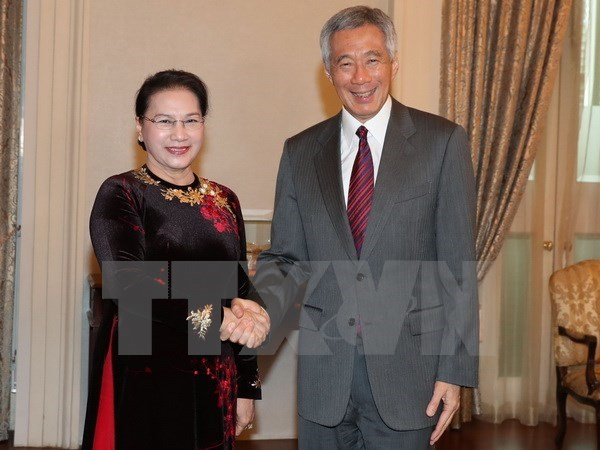 Chairwoman's Singapore, Australia trip concludes NA's eventful year hinh anh 1