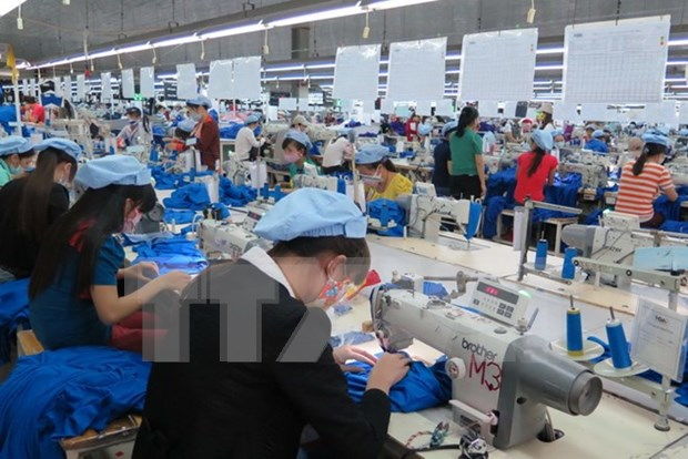 Garment exports likely to hit 31 billion USD in 2017 hinh anh 1