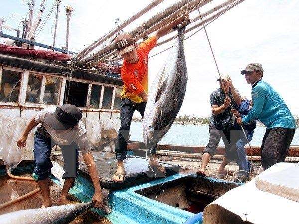 Vietnam tuna exports exceed yearly target hinh anh 1