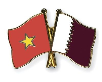 Qatar treasures ties with Vietnam hinh anh 1