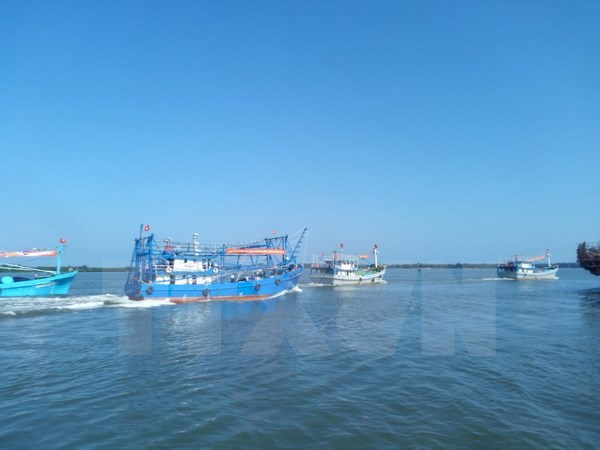 Fisheries – important economic sector of Vietnam hinh anh 1