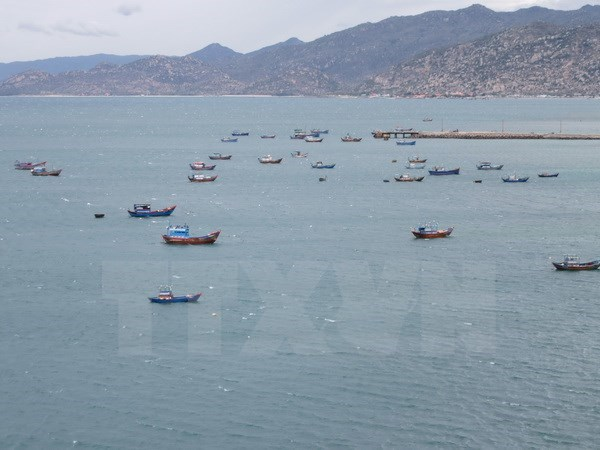 Ca Mau moves to fight illegal fishing off foreign waters hinh anh 1
