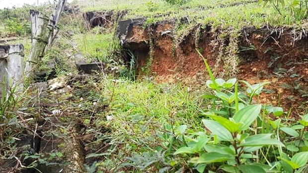 Erosion risk in central Quang Tri province hinh anh 1