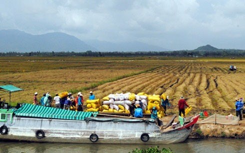 Mekong provinces link up on water management hinh anh 1