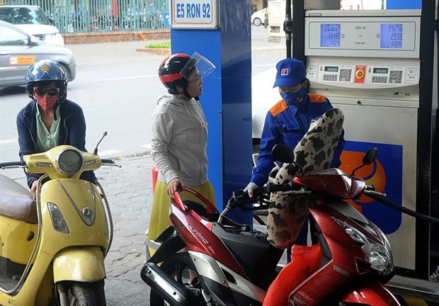 Doubts persist over E5 fuel sales hinh anh 1