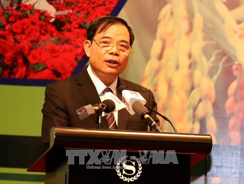 Vietnam: 90 percent of farm products exported in raw form hinh anh 1