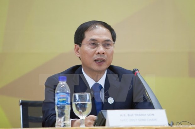 Deputy FM: APEC Year 2017 outcomes to be realised hinh anh 1