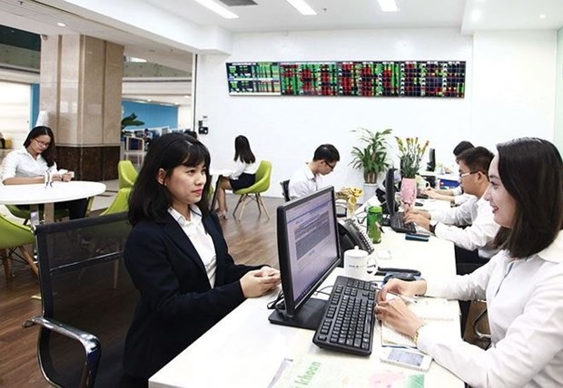 Stocks plummet on investor caution hinh anh 1