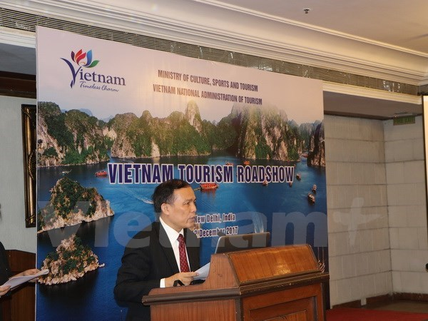 Vietnam promotes tourism in India hinh anh 1