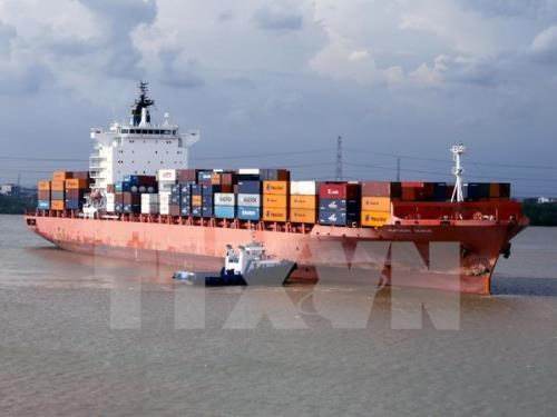 Transportation via coastal shipping route surges 154 percent hinh anh 1