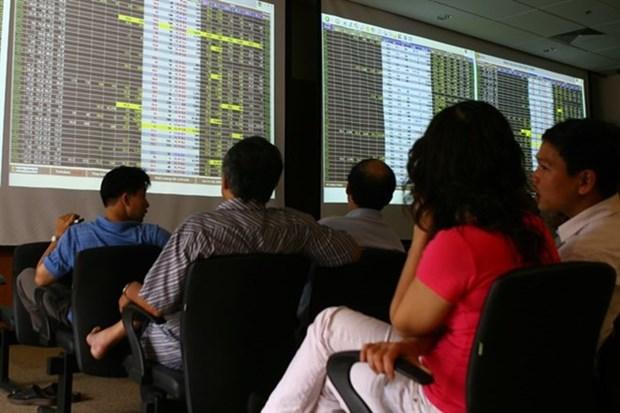 Market volatile despite recovery hinh anh 1