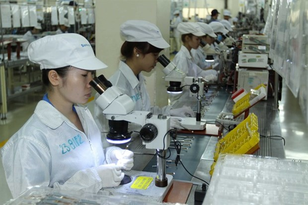 Japanese firms talk VN business obstacles hinh anh 1