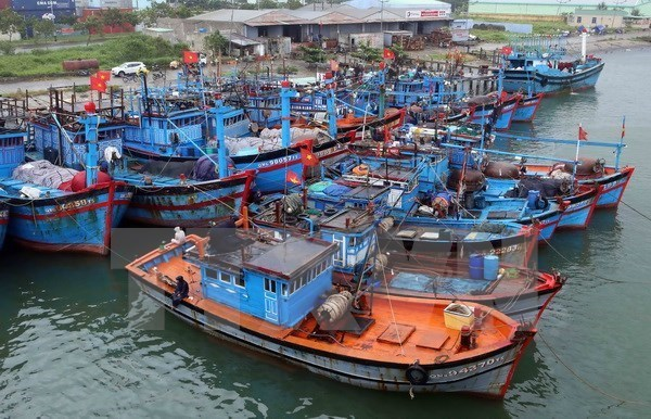 Quang Ngai asked to roll out measures to end illegal fishing hinh anh 1