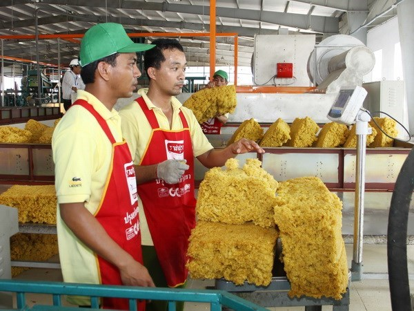 Rubber export revenue picks up 39 percent hinh anh 1