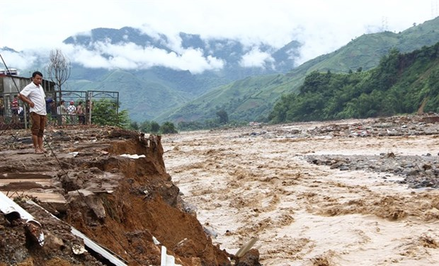 Experts: Deforestation worsening natural-disaster risks hinh anh 1