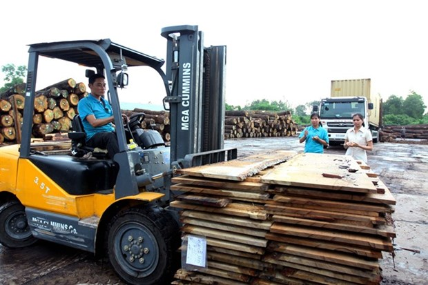 Timber exports to EU may hit 1 billion USD hinh anh 1