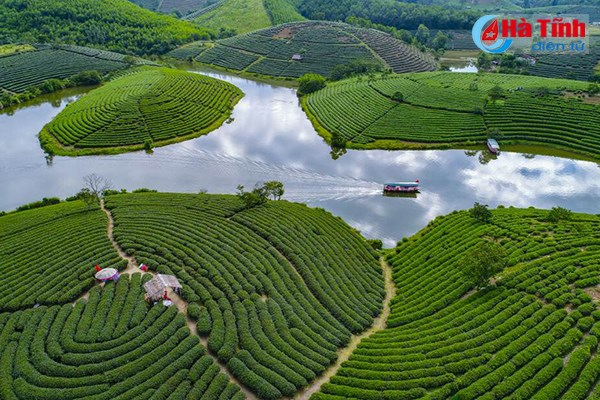 Environmental photography contest honours 19 winners hinh anh 1