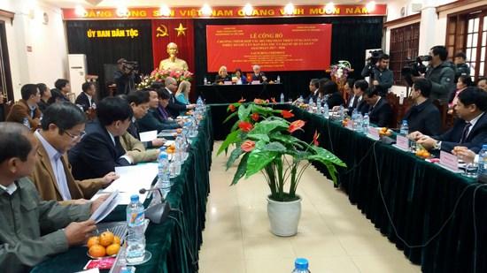 Irish Government supports Vietnam's ethnic minority area development hinh anh 1