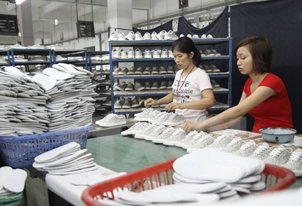 Vietnam boasts opportunities to export products to Africa, Middle East hinh anh 1