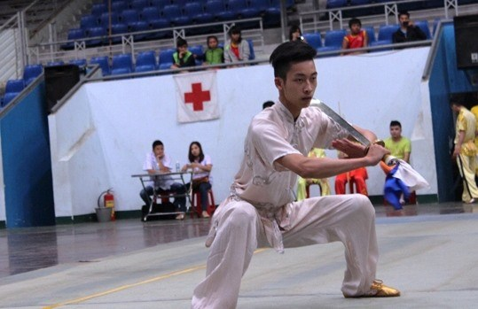 VN win four golds at Asian Sanda event hinh anh 1