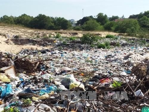 Untreated waste pollutes environment in Vinh Phuc hinh anh 1