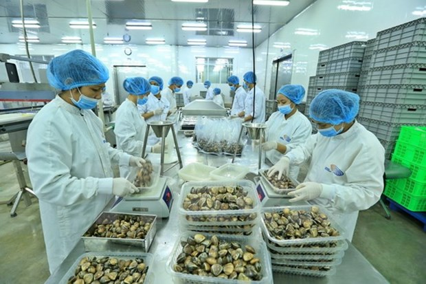 Vietnam's exports likely to hit all-high 212 billion USD this year hinh anh 1