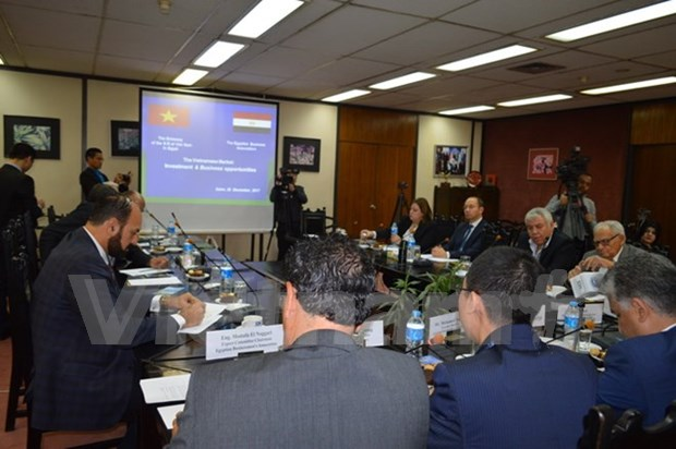 Egyptian firms updated on Vietnam's investment policy hinh anh 1
