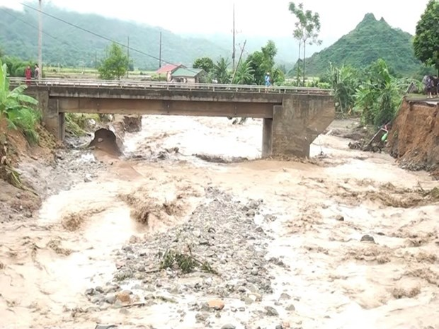 Storm-affected residents in Son La to receive rice aid hinh anh 1