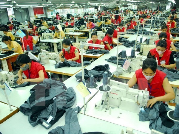 Garment-textile export earnings likely to hit 31 billion USD hinh anh 1