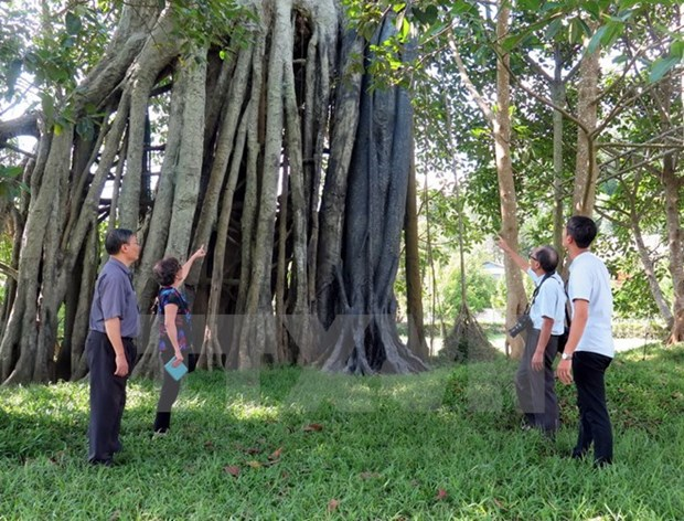 PM approves plan to develop Tan Trao tourism site hinh anh 1