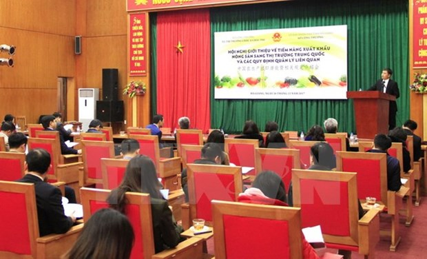 Vietnamese farm exports have big potential in China hinh anh 1