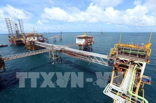 Vietsovpetro eyes 4 million tonnes of oil in 2018 hinh anh 1