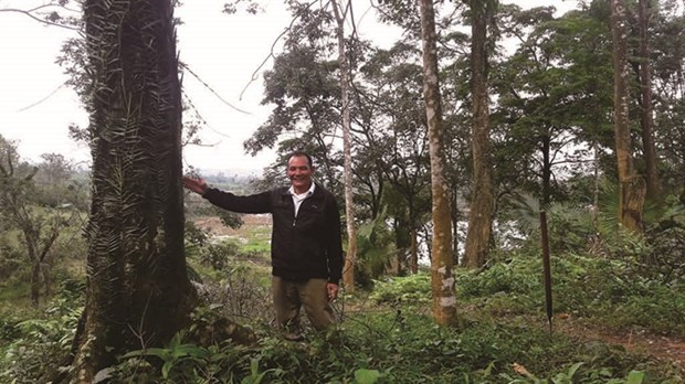 Man spends years to grow forest hinh anh 1
