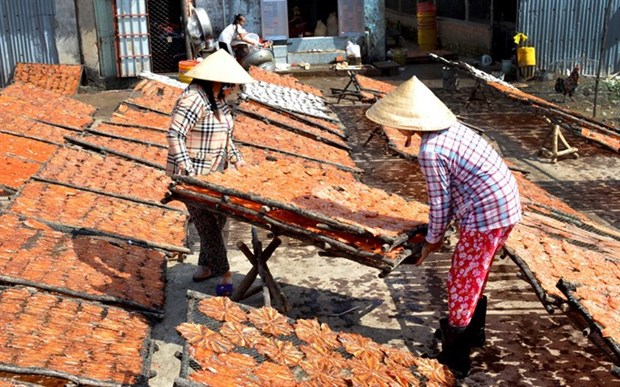 Farmers prepare special food for lunar New Year hinh anh 1