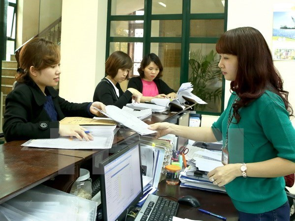 Online public services gain progress in HCM City hinh anh 1