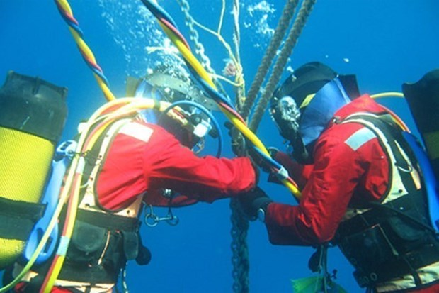 APG submarine cable to be fixed on January 6-7 hinh anh 1