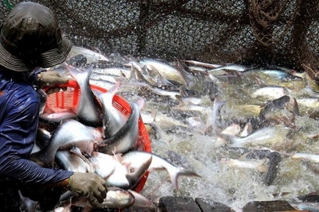 Vietnam gains record in seafood export value in 2017 hinh anh 1