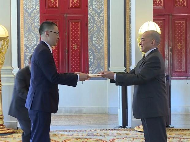 Vietnamese Ambassador presents credentials to Cambodian King hinh anh 1