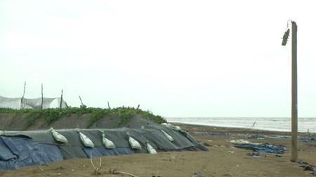 Ben Tre faces serious coast erosion hinh anh 1