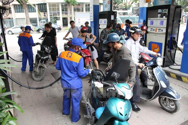 Petrol prices stable, oil prices slightly increase hinh anh 1