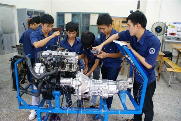 HCM City's vocational schools struggle to enroll students hinh anh 1
