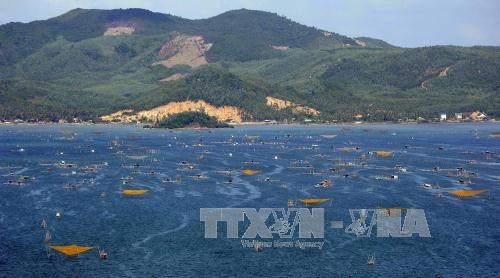 Xuan Dai Bay targets 1.2 million visitors in 2030 hinh anh 1