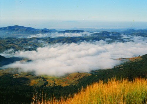 A visit to Langbiang Mountain hinh anh 1