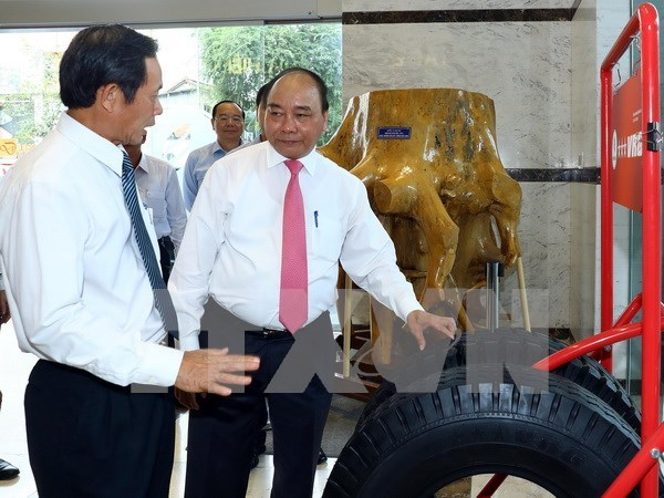 Rubber group urged to create value-added products hinh anh 1